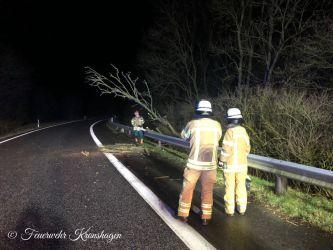 Baum auf dem Autobahnzubringer